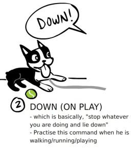 Lesson2-Down
