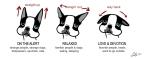 boogie ears