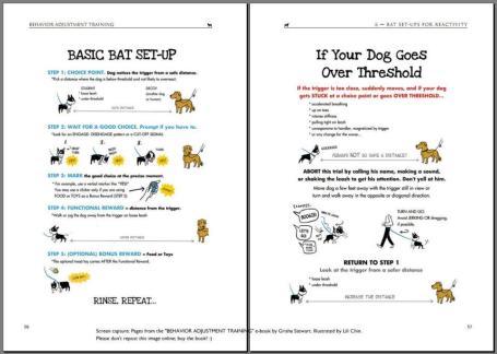 Basic BAT protocol