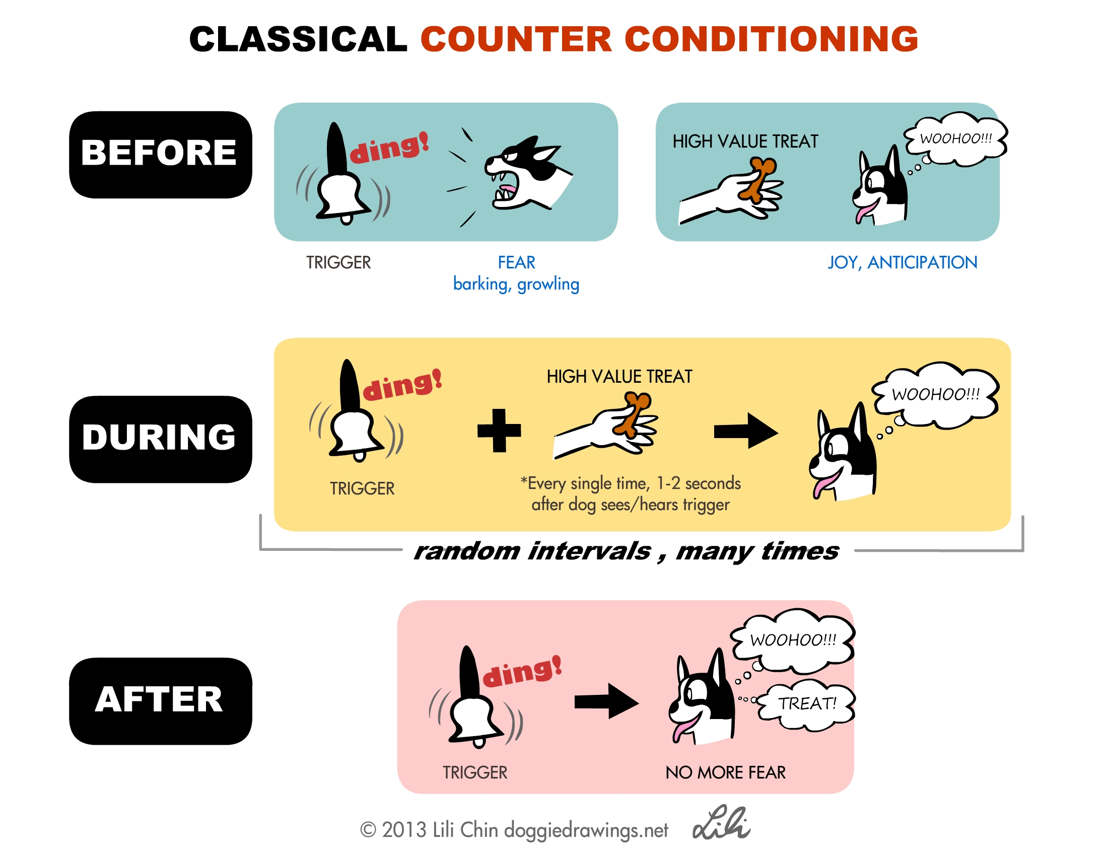 Classical Conditioning Notes From Clicker Expo Boogie
