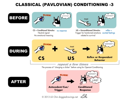 pavlov-clicker-lilichin