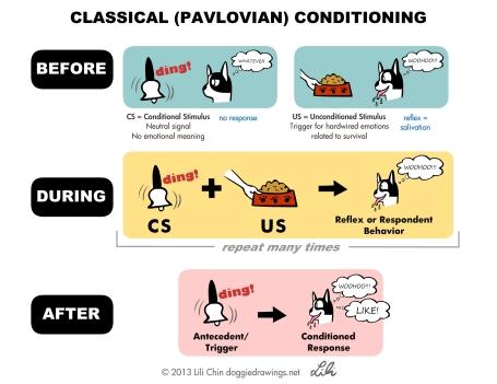 pavlov-lilichin