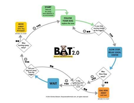 BAT2.0flowchart