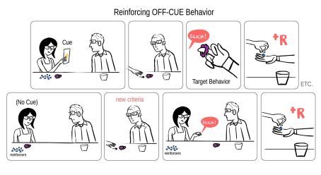 Offcuebehavior